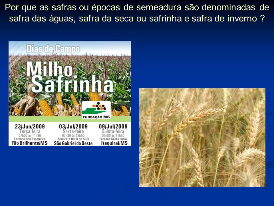 Por que as safras ou épocas de semeadura são denominadas de safra das águas, safra da seca ou safrinha e safra de inverno ?