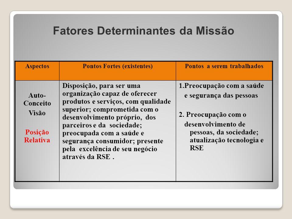 Fatores Determinantes da Missão AspectosPontos Fortes (existentes)Pontos a serem trabalhados Auto- Conceito Visão Posição Relativa Disposição, para se