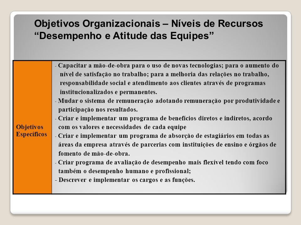 """Objetivos Organizacionais – Níveis de Recursos """"Desempenho e Atitude das Equipes"""" Objetivos Específicos - Capacitar a mão-de-obra para o uso de novas"""