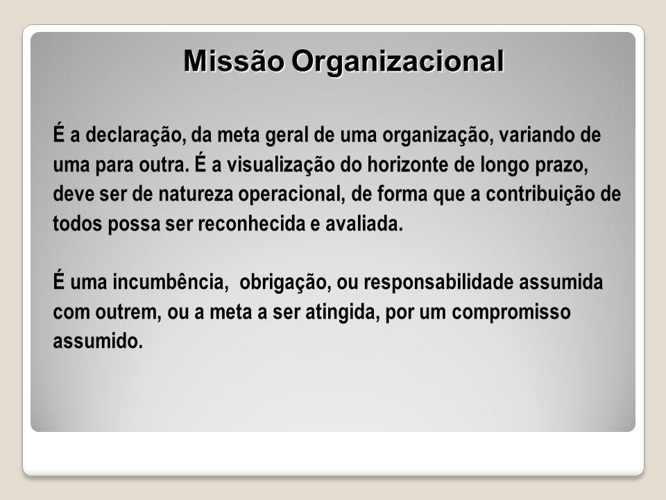 É a declaração, da meta geral de uma organização, variando de uma para outra. É a visualização do horizonte de longo prazo, deve ser de natureza opera