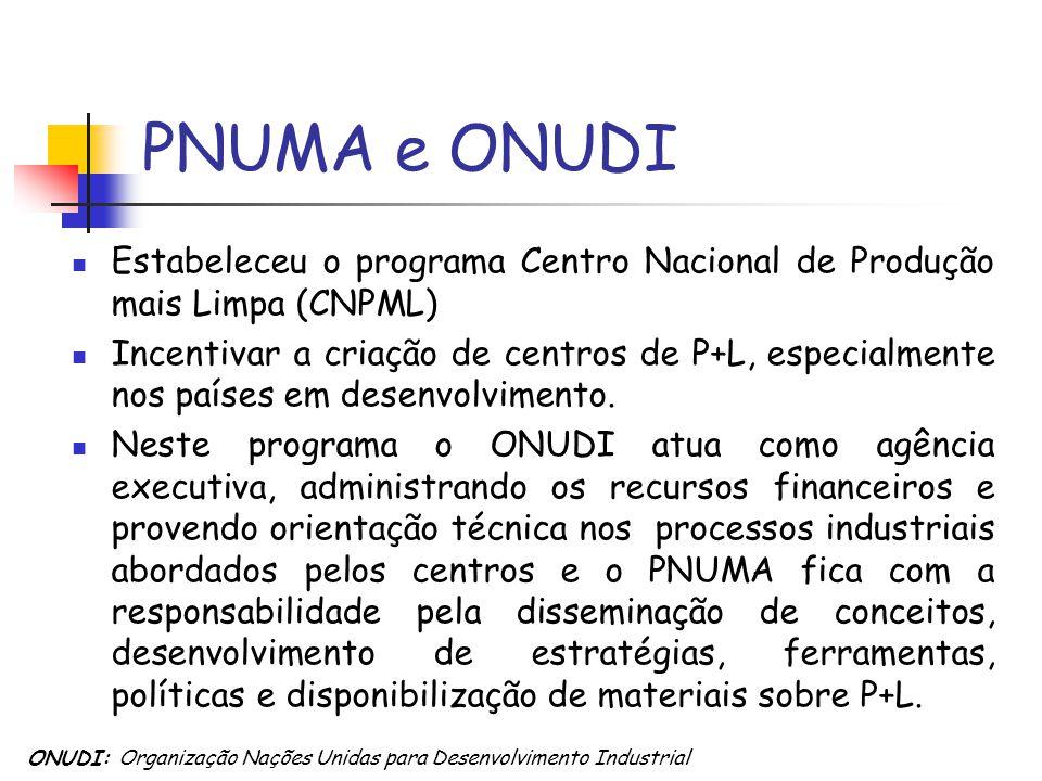 PNUMA e ONUDI Estabeleceu o programa Centro Nacional de Produção mais Limpa (CNPML) Incentivar a criação de centros de P+L, especialmente nos países e