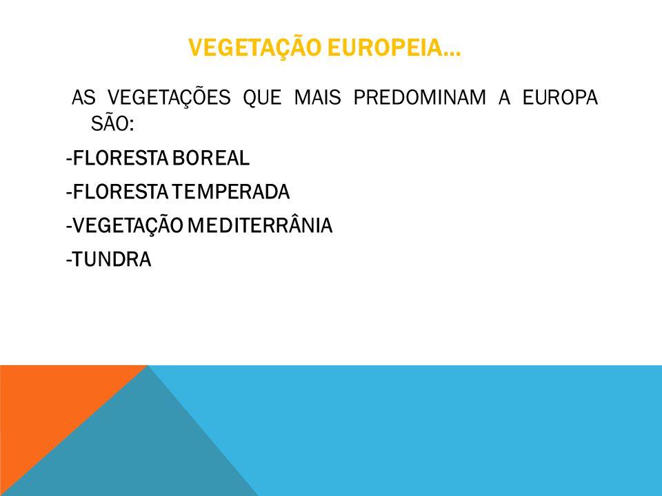 VEGETAÇÃO EUROPEIA... AS VEGETAÇÕES QUE MAIS PREDOMINAM A EUROPA SÃO: -FLORESTA BOREAL -FLORESTA TEMPERADA -VEGETAÇÃO MEDITERRÂNIA -TUNDRA