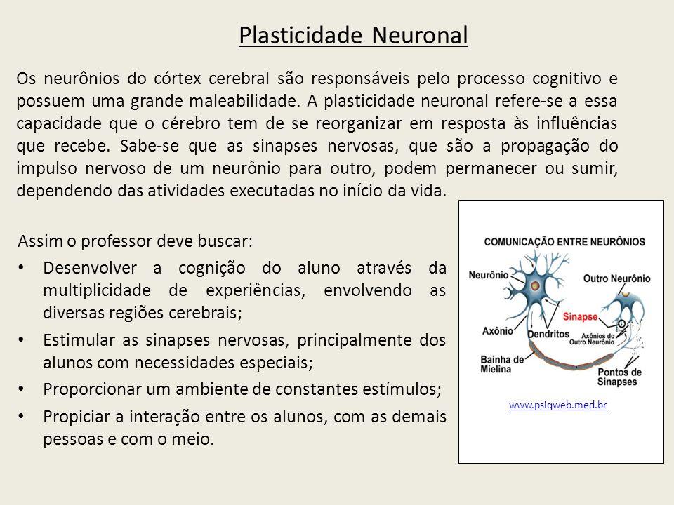 Plasticidade Neuronal Os neurônios do córtex cerebral são responsáveis pelo processo cognitivo e possuem uma grande maleabilidade.
