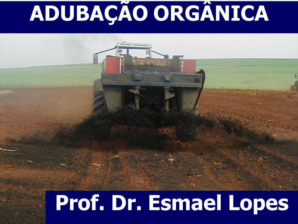 2 CONCEITOS IMPORTANTES Matéria Orgânica substância ou material de origem vegetal ou animal existente no solo independente do seu grau de decomposição.