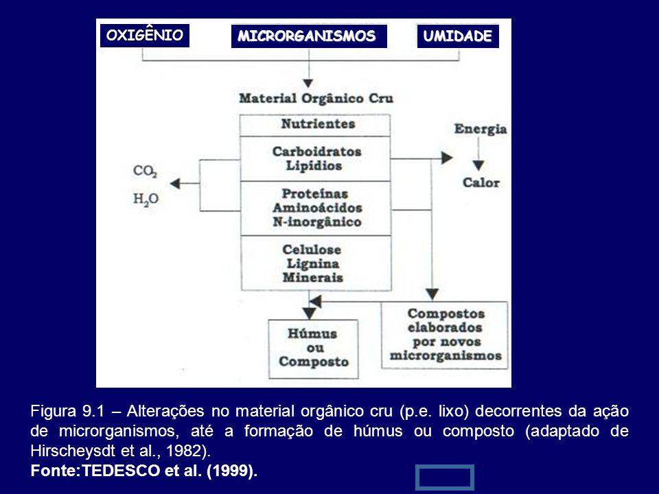 12 Figura 9.1 – Alterações no material orgânico cru (p.e. lixo) decorrentes da ação de microrganismos, até a formação de húmus ou composto (adaptado d