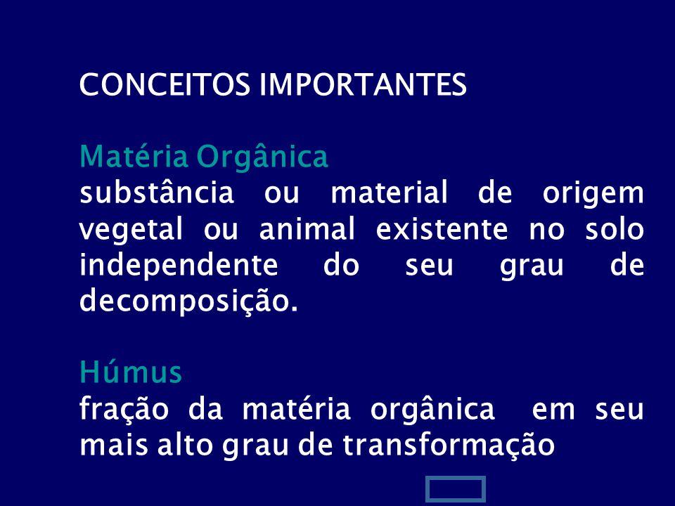 2 CONCEITOS IMPORTANTES Matéria Orgânica substância ou material de origem vegetal ou animal existente no solo independente do seu grau de decomposição