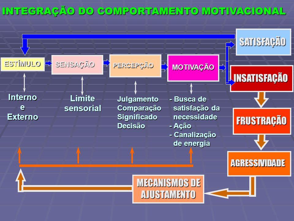SENSAÇÃO PERCEPÇÃO ESTÍMULO MOTIVAÇÃO INSATISFAÇÃO FRUSTRAÇÃO AGRESSIVIDADE MECANISMOS DE AJUSTAMENTO InternoeExterno Limitesensorial JulgamentoComparaçãoSignificadoDecisão - Busca de satisfação da satisfação da necessidade necessidade - Ação - Canalização de energia de energia SATISFAÇÃO INTEGRAÇÃO DO COMPORTAMENTO MOTIVACIONAL CWB FGV/SP 2005