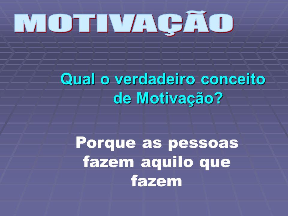 Qual o verdadeiro conceito de Motivação Porque as pessoas fazem aquilo que fazem CWB FGV/SP 2006