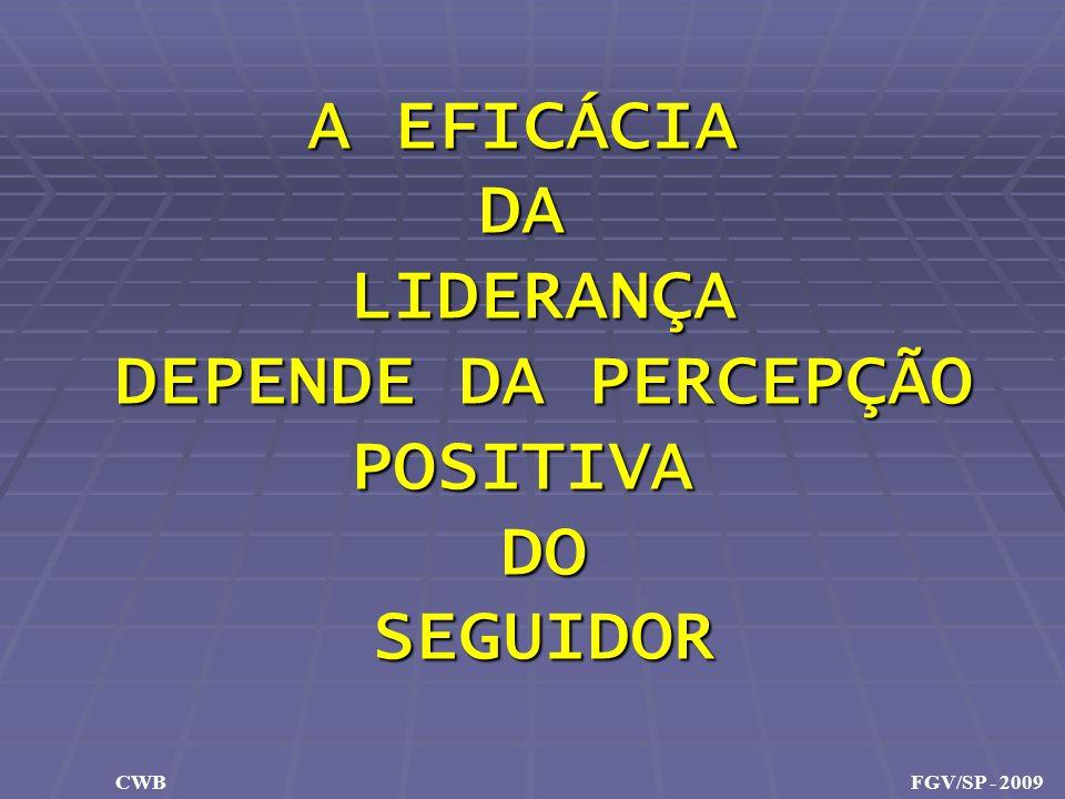 A EFICÁCIA DALIDERANÇA DEPENDE DA PERCEPÇÃO POSITIVADOSEGUIDOR CWB FGV/SP - 2009