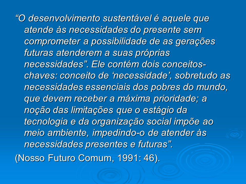"""""""O desenvolvimento sustentável é aquele que atende às necessidades do presente sem comprometer a possibilidade de as gerações futuras atenderem a suas"""
