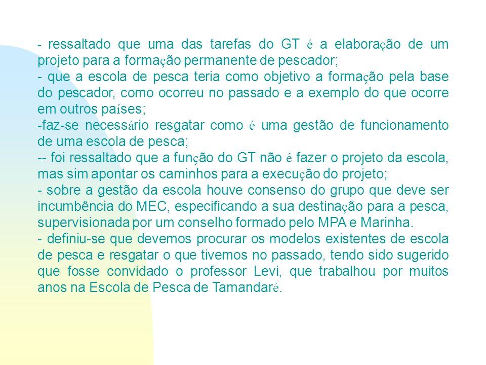 Deliberações do GT A minuta do relat ó rio do GT dever á ser acrescida com novas contribui ç ões, principalmente por parte dos representantes da DPC e do MEC.