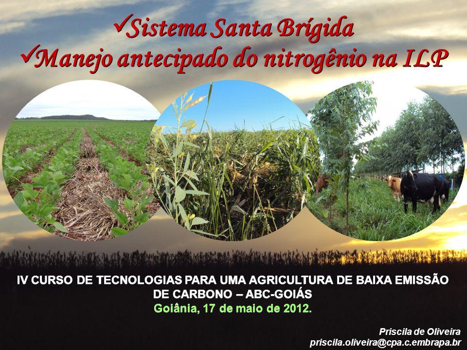 Sistema Santa Brígida IV CURSO DE TECNOLOGIAS PARA UMA AGRICULTURA DE BAIXA EMISSÃO DE CARBONO – ABC-GOIÁS Goiânia, 17 de maio de 2012.