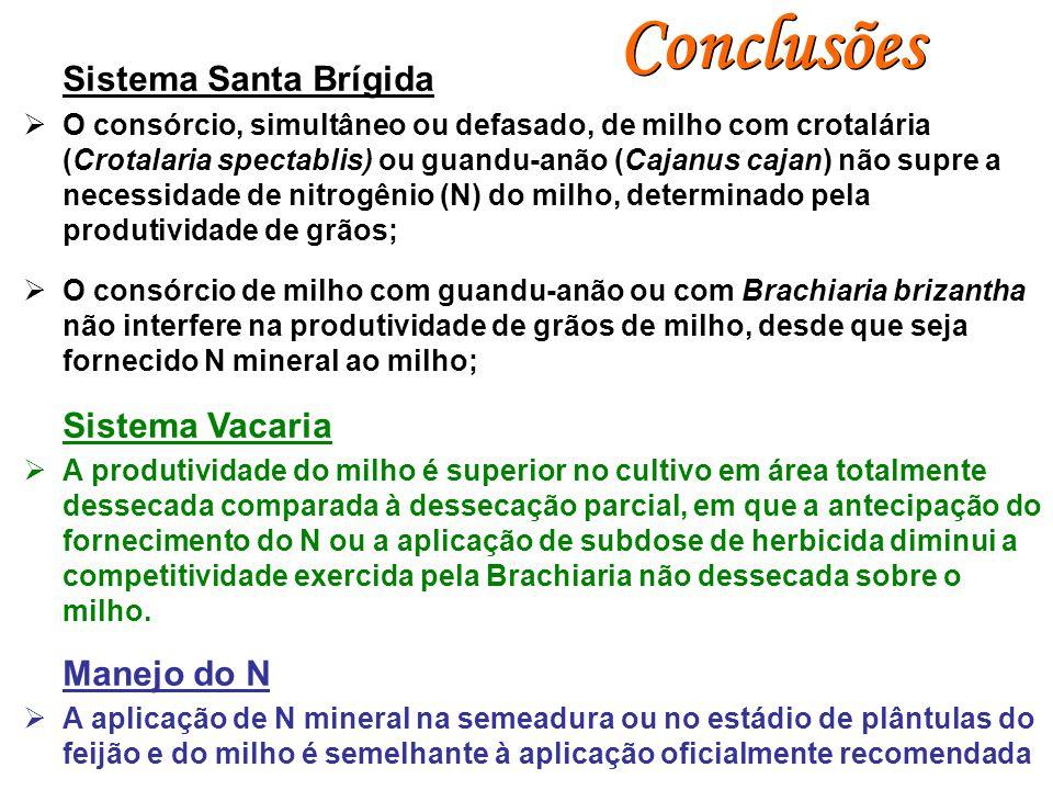Conclusões Sistema Santa Brígida  O consórcio, simultâneo ou defasado, de milho com crotalária (Crotalaria spectablis) ou guandu-anão (Cajanus cajan)