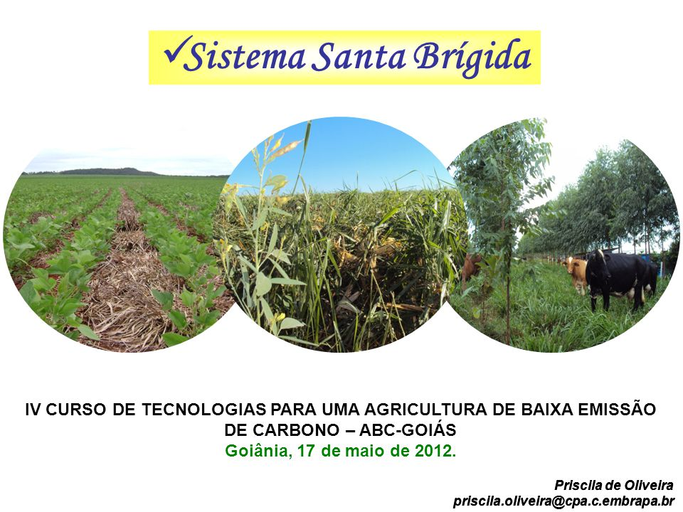 Sistema Santa Brígida IV CURSO DE TECNOLOGIAS PARA UMA AGRICULTURA DE BAIXA EMISSÃO DE CARBONO – ABC-GOIÁS Goiânia, 17 de maio de 2012. IV CURSO DE TE