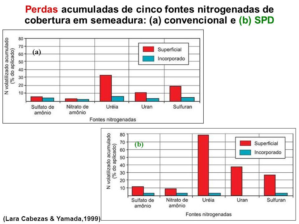Perdas acumuladas de cinco fontes nitrogenadas de cobertura em semeadura: (a) convencional e (b) SPD (a) (b) (Lara Cabezas & Yamada,1999)