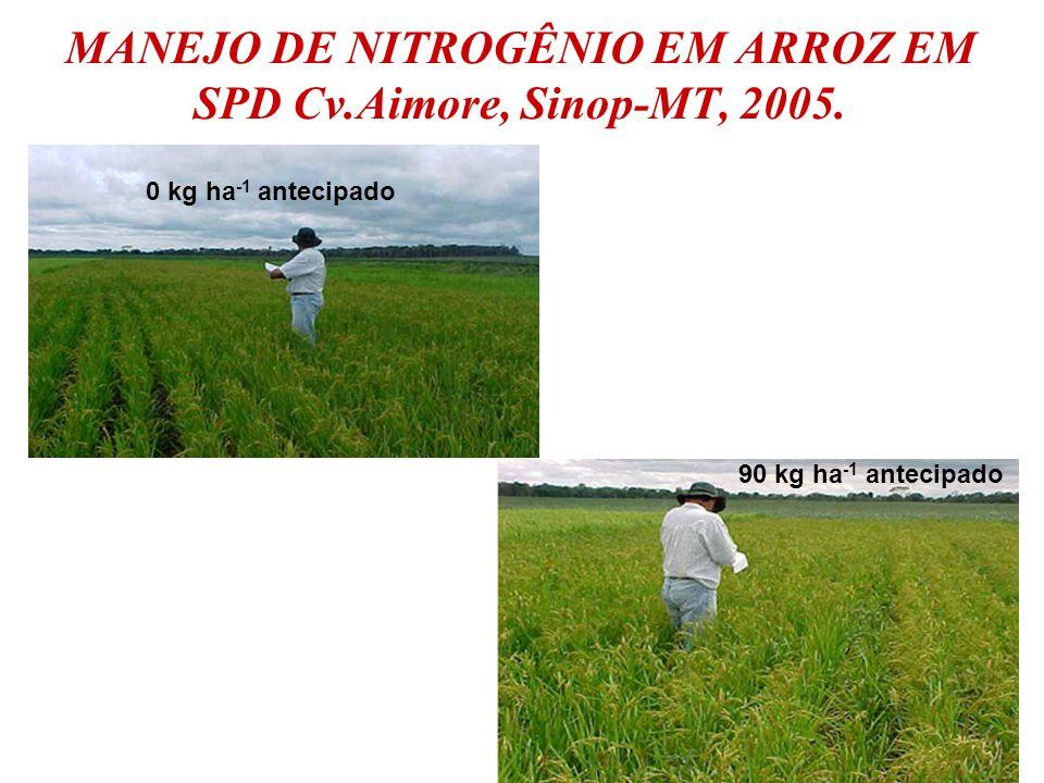 MANEJO DE NITROGÊNIO EM ARROZ EM SPD Cv.Aimore, Sinop-MT, 2005. 0 kg ha -1 antecipado 90 kg ha -1 antecipado