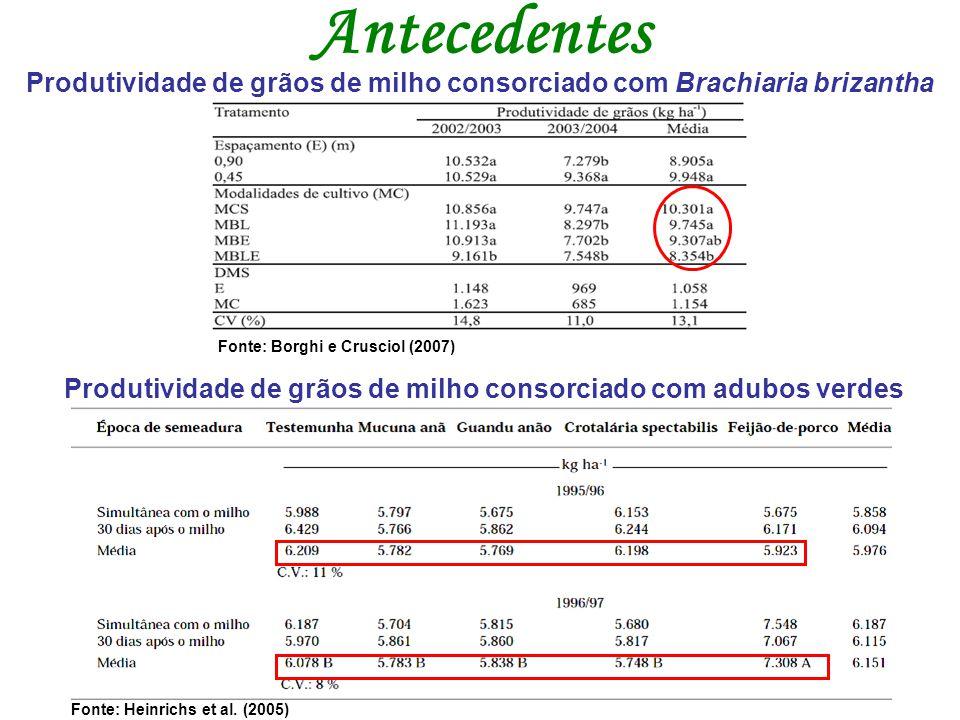 Fonte: Borghi e Crusciol (2007) Fonte: Heinrichs et al. (2005) Produtividade de grãos de milho consorciado com Brachiaria brizantha Produtividade de g