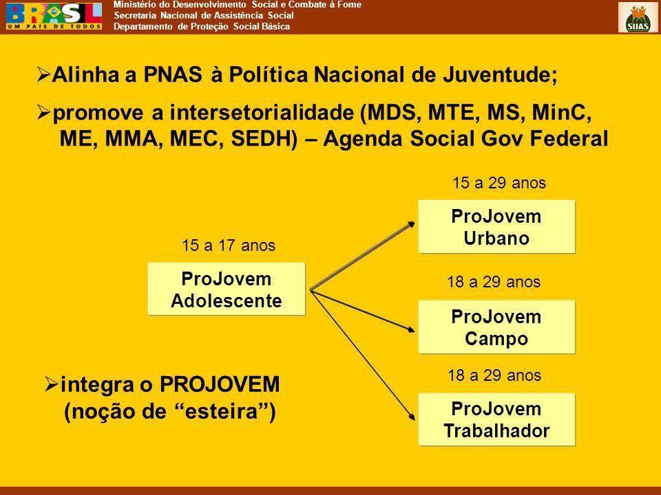 Ministério do Desenvolvimento Social e Combate à Fome Secretaria Nacional de Assistência Social Departamento de Proteção Social Básica  Alinha a PNAS