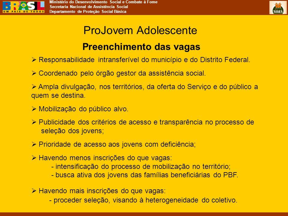 Ministério do Desenvolvimento Social e Combate à Fome Secretaria Nacional de Assistência Social Departamento de Proteção Social Básica Preenchimento d