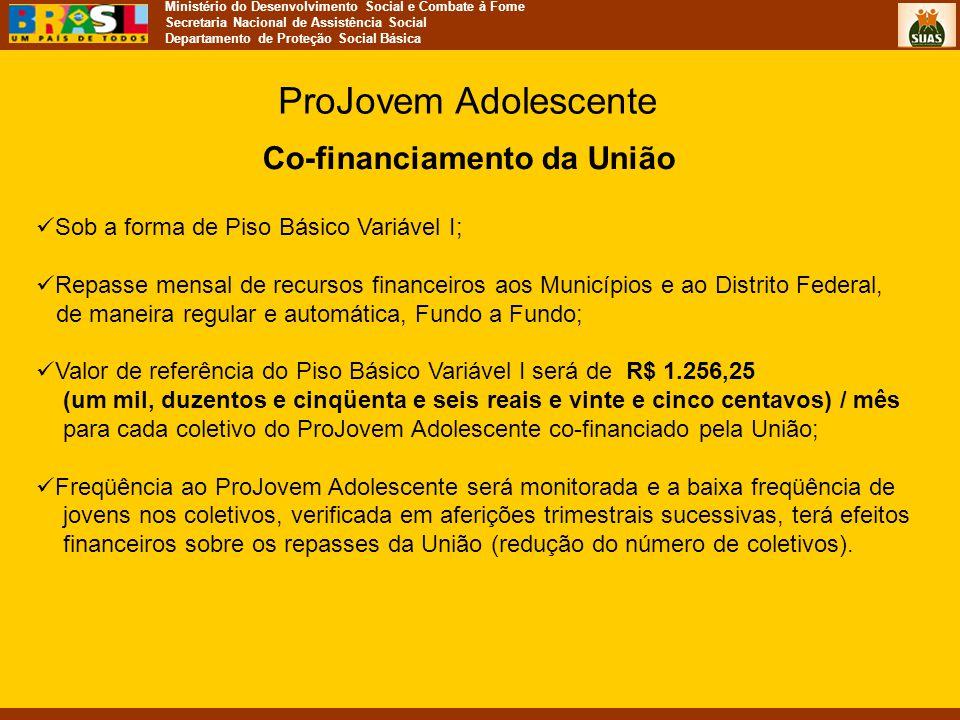 Ministério do Desenvolvimento Social e Combate à Fome Secretaria Nacional de Assistência Social Departamento de Proteção Social Básica Co-financiament