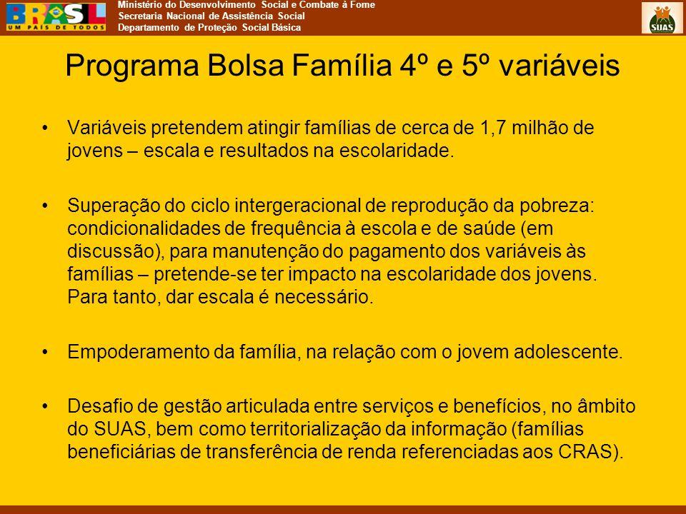 Ministério do Desenvolvimento Social e Combate à Fome Secretaria Nacional de Assistência Social Departamento de Proteção Social Básica Programa Bolsa