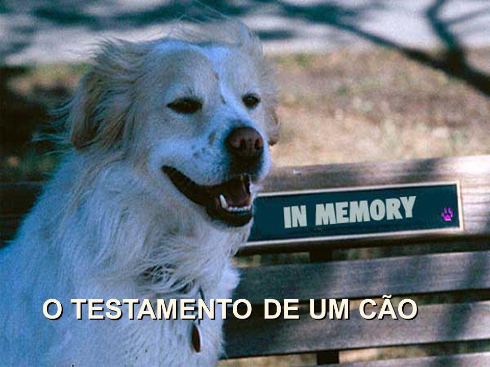 O TESTAMENTO DE UM CÃO