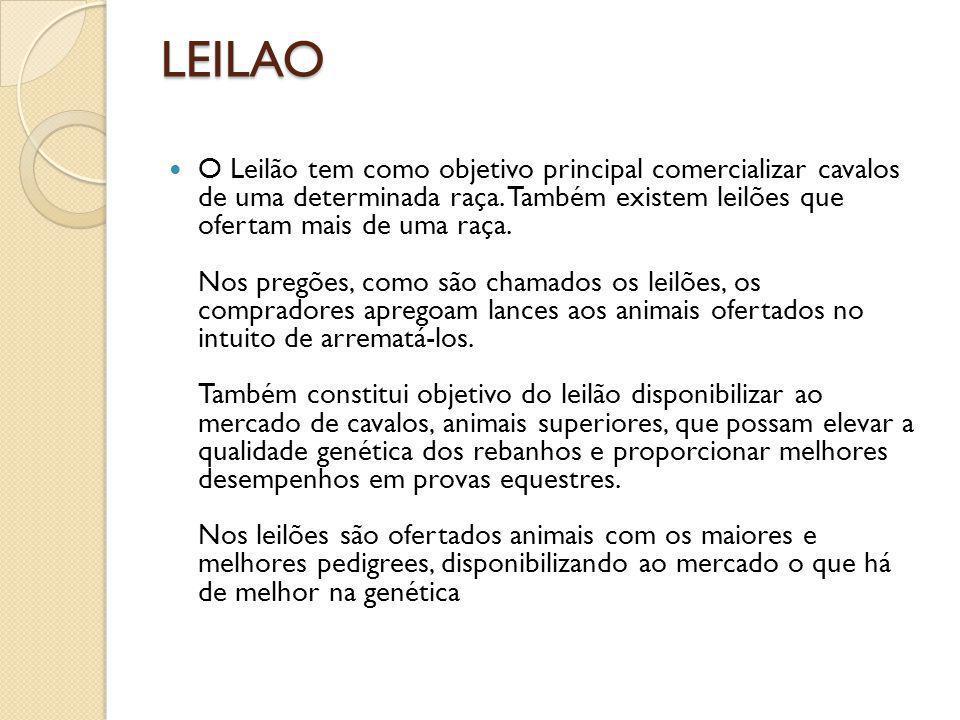 LEILAO O Leilão tem como objetivo principal comercializar cavalos de uma determinada raça. Também existem leilões que ofertam mais de uma raça. Nos pr