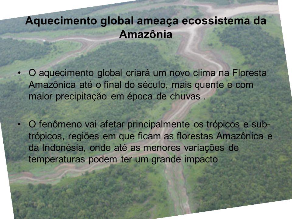 Aquecimento global ameaça ecossistema da Amazônia O aquecimento global criará um novo clima na Floresta Amazônica até o final do século, mais quente e