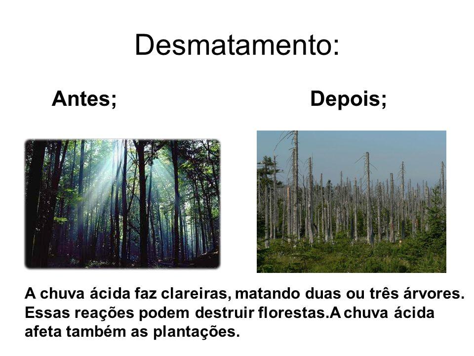 Desmatamento: Antes; Depois; A chuva ácida faz clareiras, matando duas ou três árvores. Essas reações podem destruir florestas.A chuva ácida afeta tam