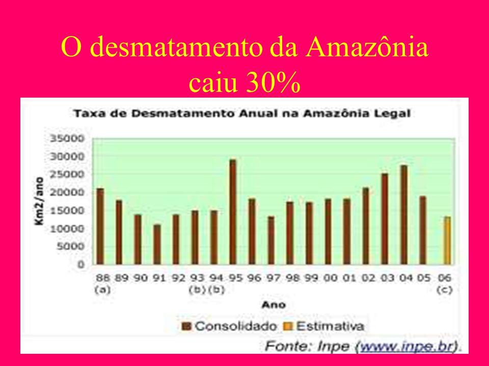 O desmatamento da Amazônia caiu 30%