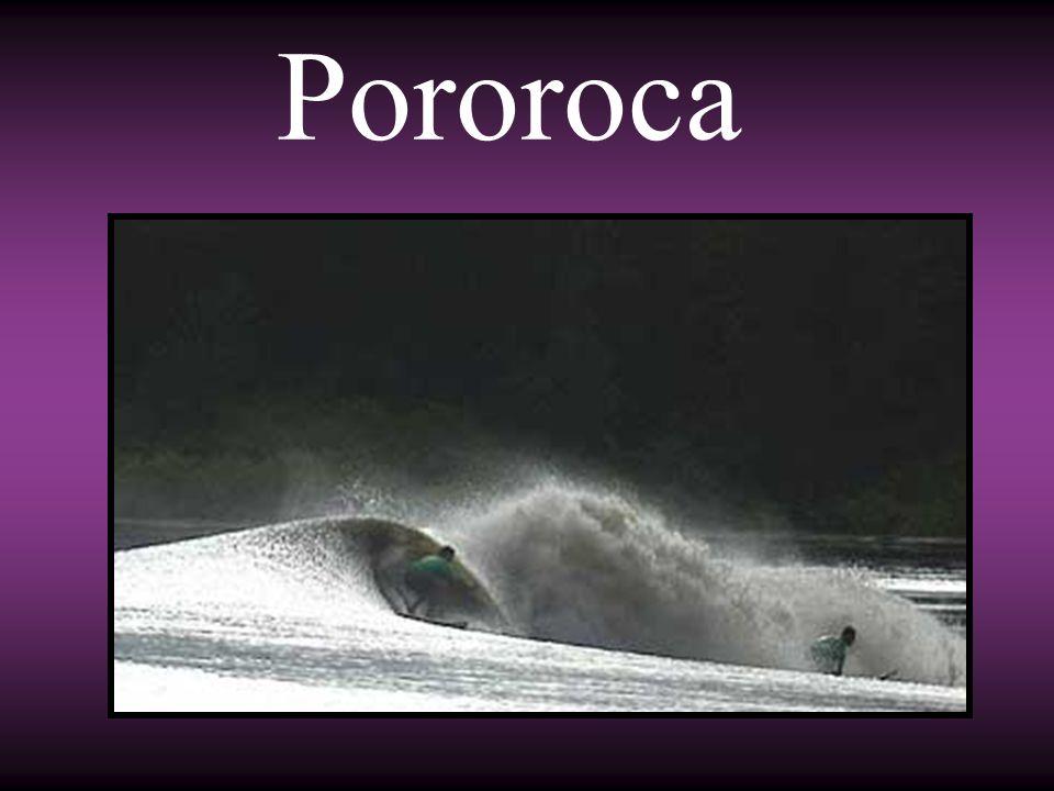 Pororoca é o fenômeno produzido pelo encontro das correntes da maré com as fluviais durante as luas novas e cheias.