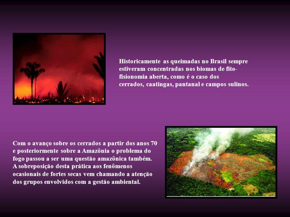 Historicamente as queimadas no Brasil sempre estiveram concentradas nos biomas de fito- fisionomia aberta, como é o caso dos cerrados, caatingas, pant