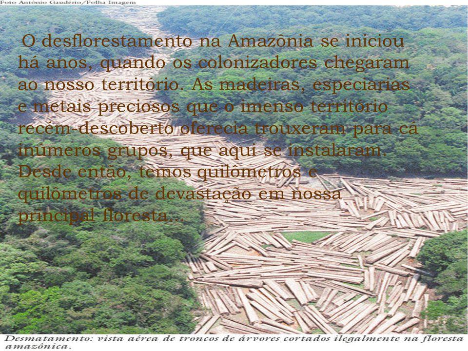 O desflorestamento na Amazônia se iniciou há anos, quando os colonizadores chegaram ao nosso território. As madeiras, especiarias e metais preciosos q