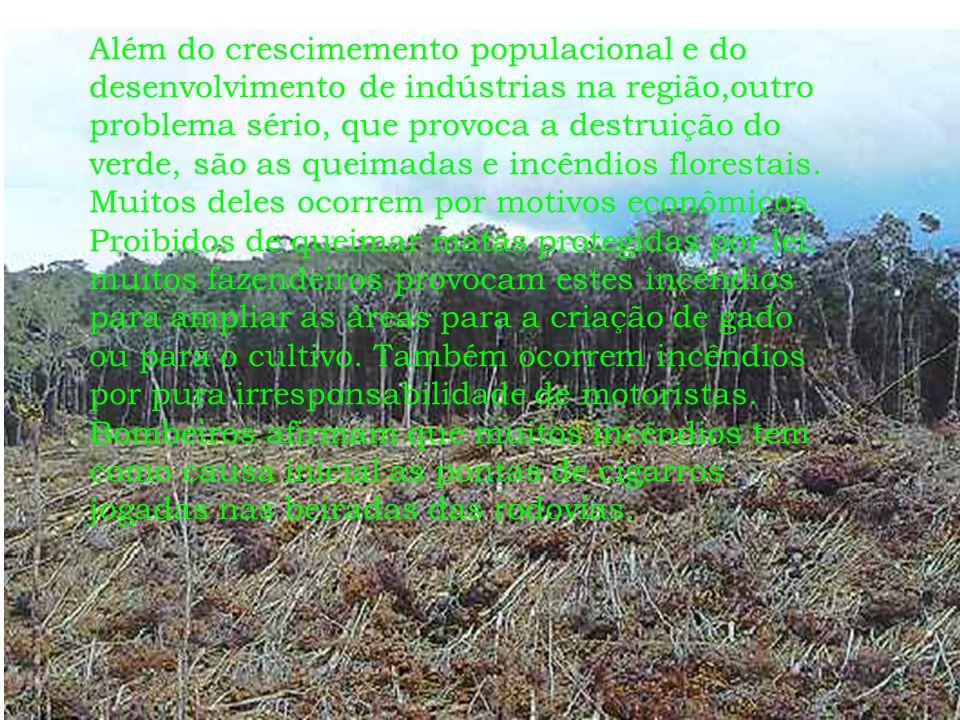 Além do crescimemento populacional e do desenvolvimento de indústrias na região,outro problema sério, que provoca a destruição do verde, são as queima