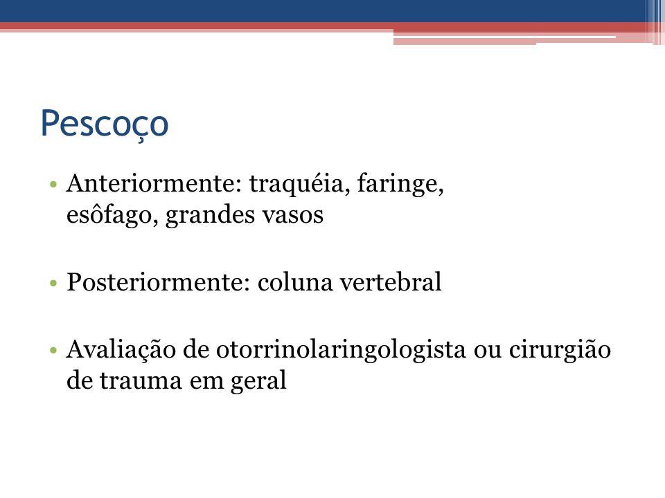 Pescoço Anteriormente: traquéia, faringe, esôfago, grandes vasos Posteriormente: coluna vertebral Avaliação de otorrinolaringologista ou cirurgião de