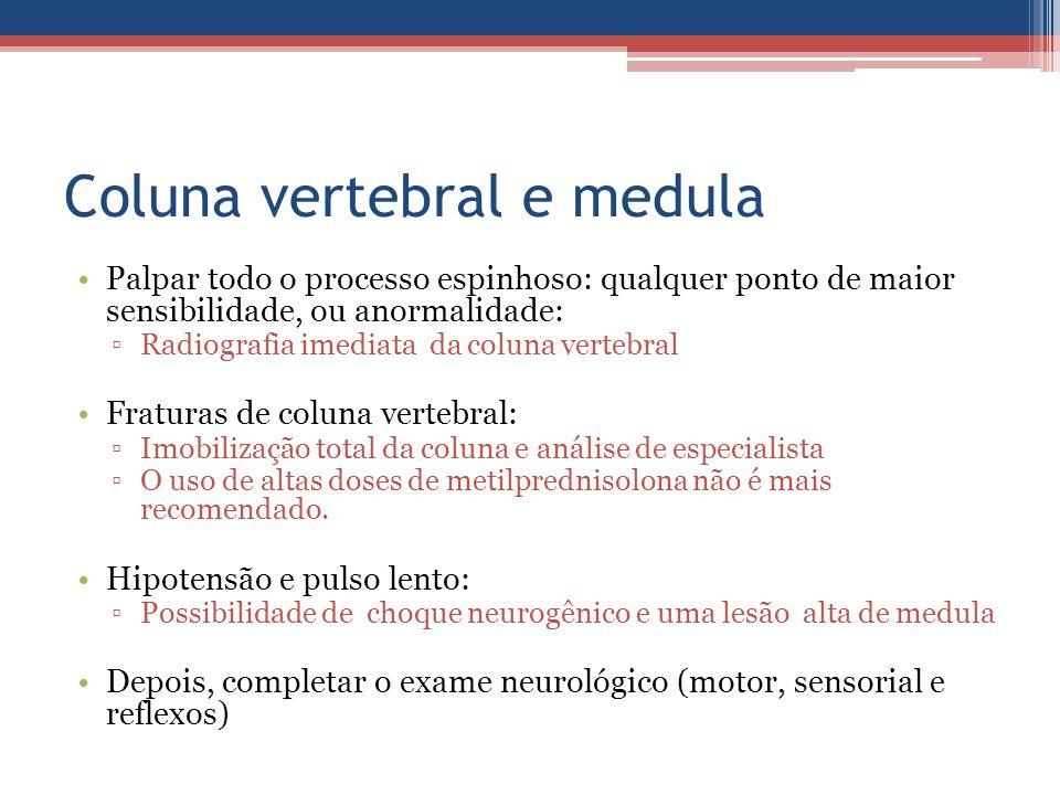 Coluna vertebral e medula Palpar todo o processo espinhoso: qualquer ponto de maior sensibilidade, ou anormalidade: ▫Radiografia imediata da coluna ve