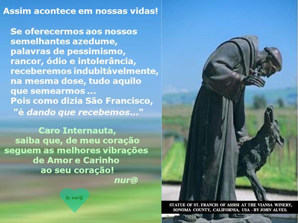 Amigo Internauta, A história do Lobo de Gúbio, chama-nos, sem dúvida, à reflexão.