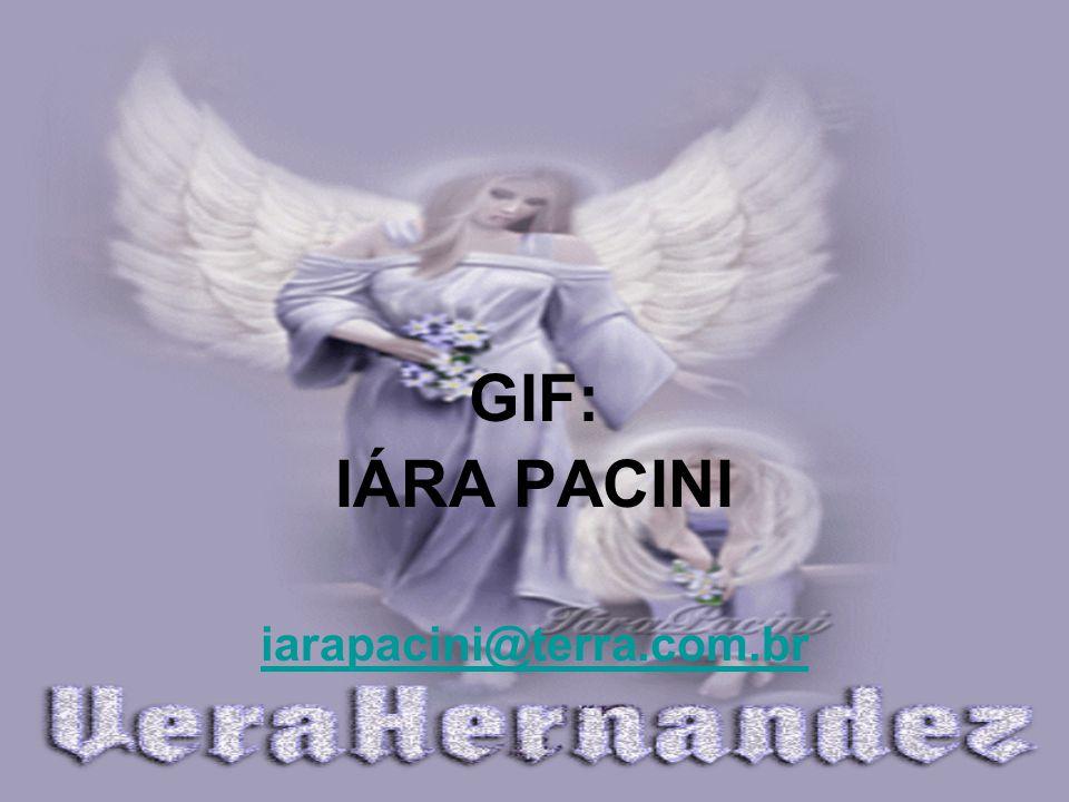 veramhernandez@ig.com.br