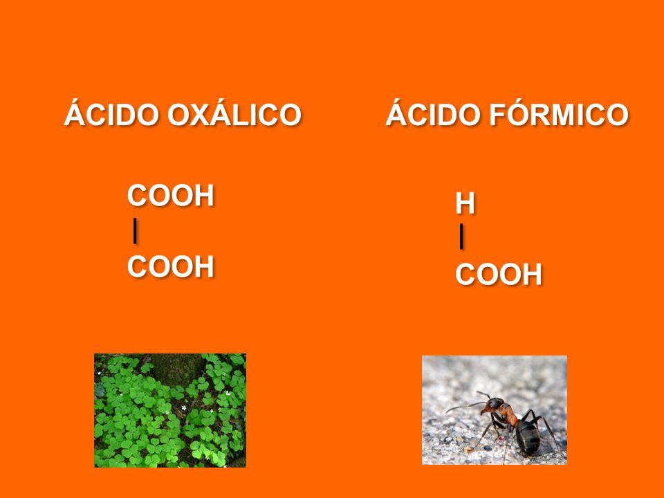 ÁCIDO OXÁLICO ÁCIDO FÓRMICO COOH H COOH H COOH