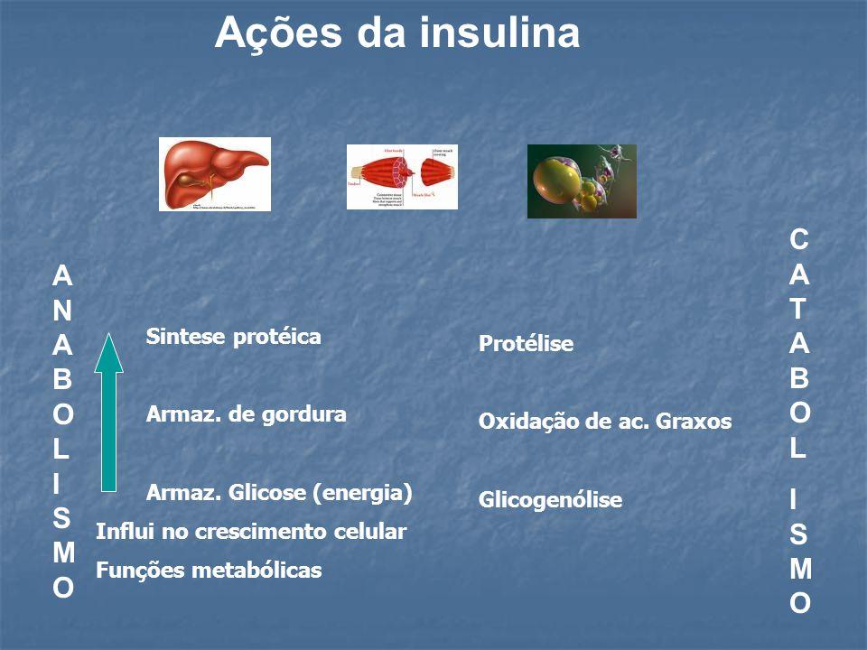 Ações da insulina ANABOLISMOANABOLISMO CATABOLISMOCATABOLISMO Sintese protéica Armaz. de gordura Armaz. Glicose (energia) Influi no crescimento celula