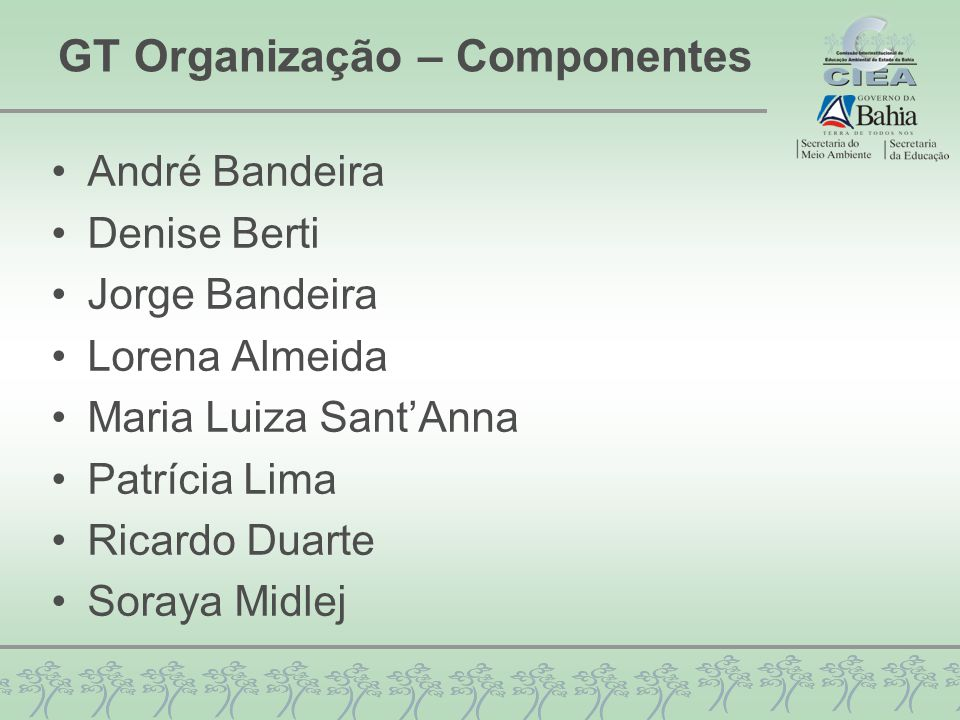 GT Organização – Componentes André Bandeira Denise Berti Jorge Bandeira Lorena Almeida Maria Luiza Sant'Anna Patrícia Lima Ricardo Duarte Soraya Midle