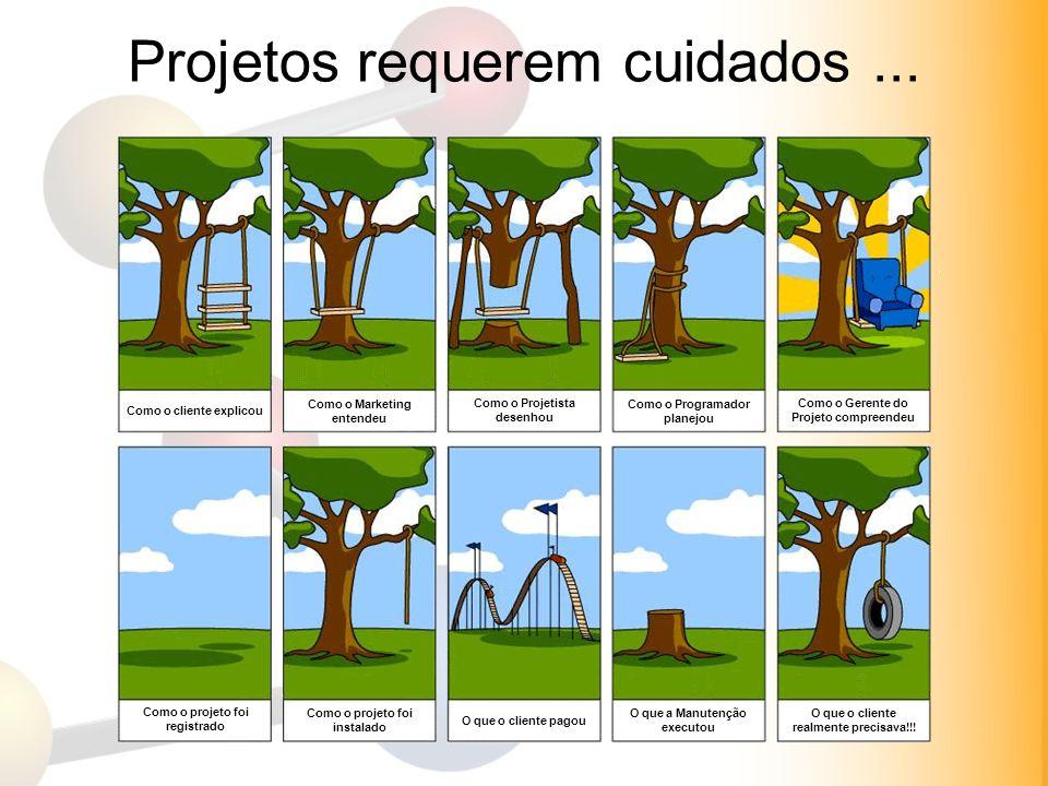 Projetos requerem cuidados... Como o cliente explicou Como o Marketing entendeu Como o Projetista desenhou Como o Programador planejou Como o Gerente