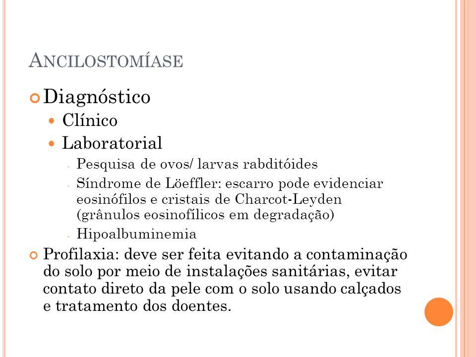 A NCILOSTOMÍASE Diagnóstico Clínico Laboratorial - Pesquisa de ovos/ larvas rabditóides - Síndrome de Löeffler: escarro pode evidenciar eosinófilos e cristais de Charcot-Leyden (grânulos eosinofílicos em degradação) - Hipoalbuminemia Profilaxia: deve ser feita evitando a contaminação do solo por meio de instalações sanitárias, evitar contato direto da pele com o solo usando calçados e tratamento dos doentes.