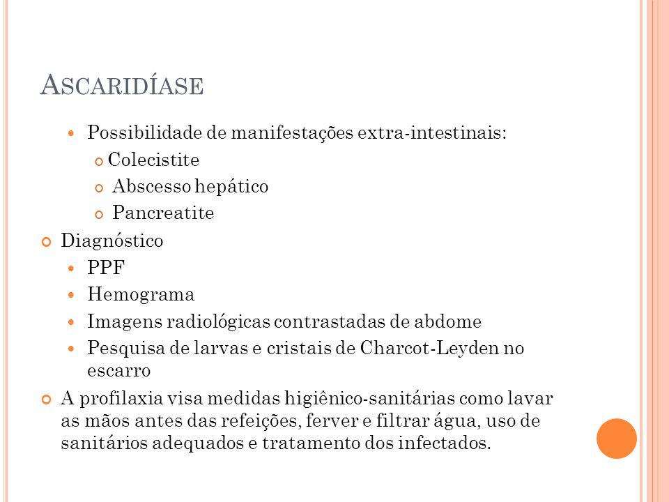 A SCARIDÍASE Possibilidade de manifestações extra-intestinais: Colecistite Abscesso hepático Pancreatite Diagnóstico PPF Hemograma Imagens radiológicas contrastadas de abdome Pesquisa de larvas e cristais de Charcot-Leyden no escarro A profilaxia visa medidas higiênico-sanitárias como lavar as mãos antes das refeições, ferver e filtrar água, uso de sanitários adequados e tratamento dos infectados.