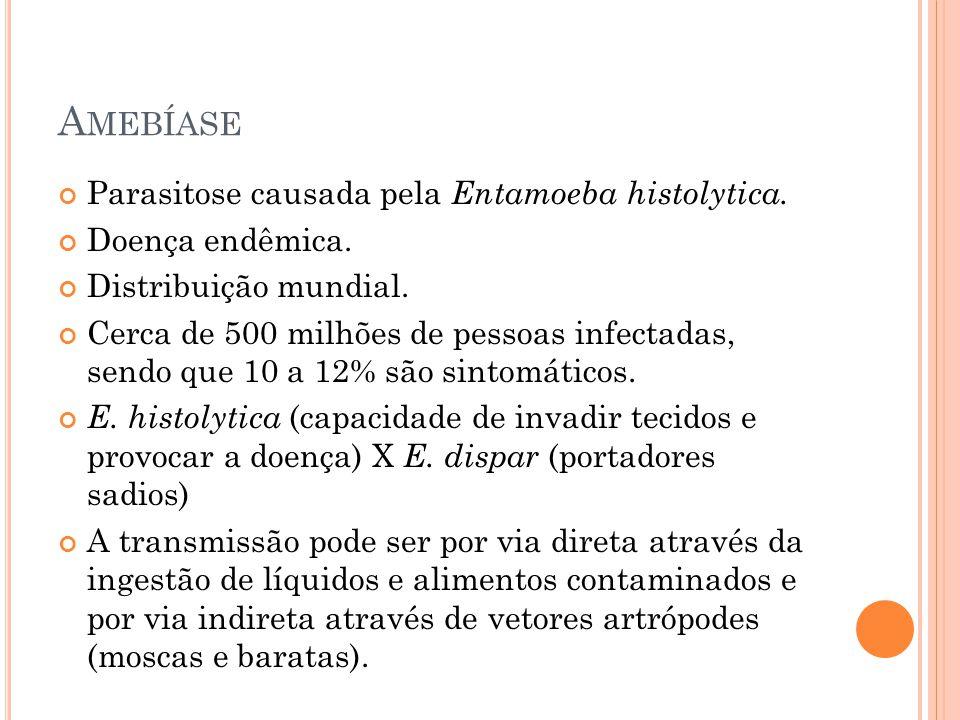 A MEBÍASE Parasitose causada pela Entamoeba histolytica.