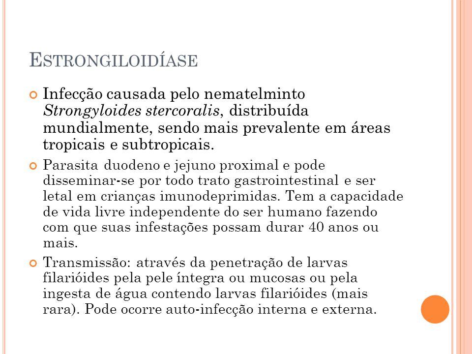 E STRONGILOIDÍASE Infecção causada pelo nematelminto Strongyloides stercoralis, distribuída mundialmente, sendo mais prevalente em áreas tropicais e subtropicais.