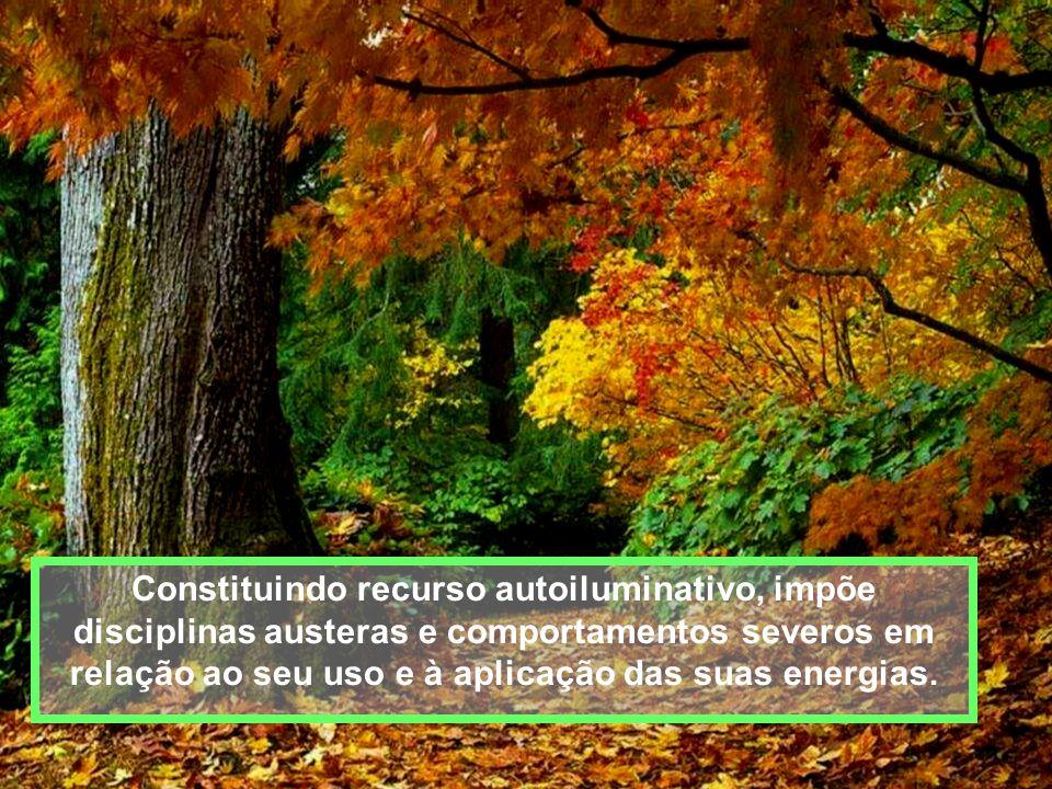 Por consequência, o exercício da mediunidade convida à reflexão e ao espírito de serviço em favor das demais pessoas.