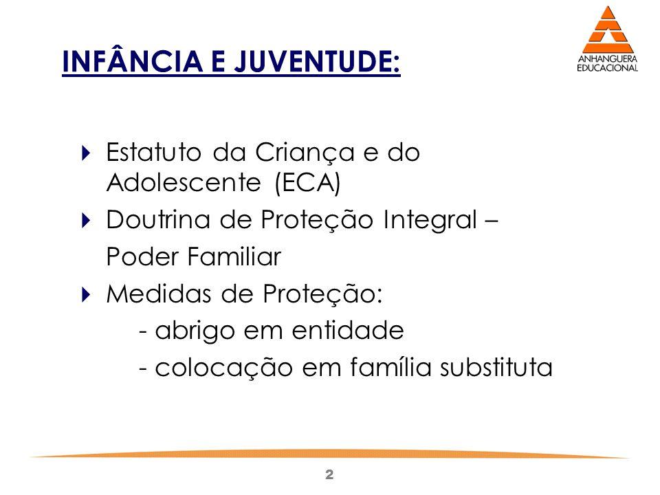 2 INFÂNCIA E JUVENTUDE:  Estatuto da Criança e do Adolescente (ECA)  Doutrina de Proteção Integral – Poder Familiar  Medidas de Proteção: - abrigo em entidade - colocação em família substituta