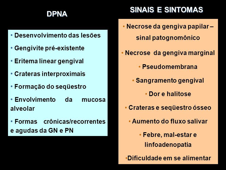 DPNA DPNA Desenvolvimento das lesões Gengivite pré-existente Eritema linear gengival Crateras interproximais Formação do seqüestro Envolvimento da muc