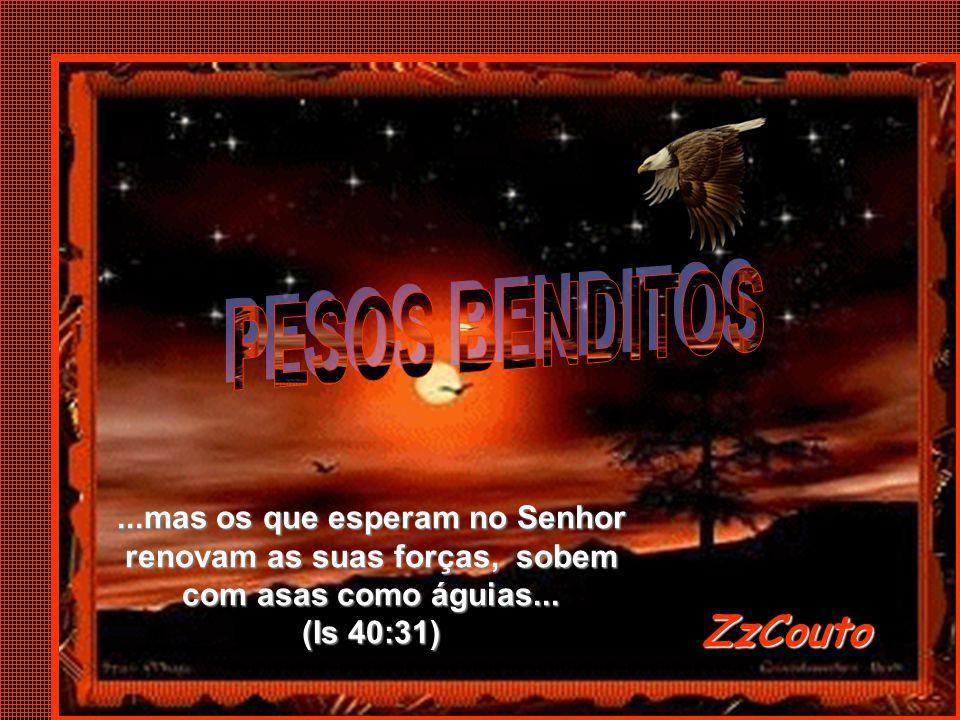 ZzCouto ZzCouto...mas os que esperam no Senhor renovam as suas forças, sobem com asas como águias...